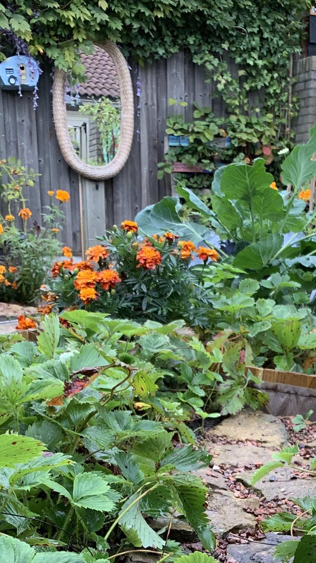 buitenleven tuinkamer